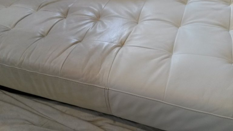 Leather Cleaning Service Stainoff Carpet Cleaning